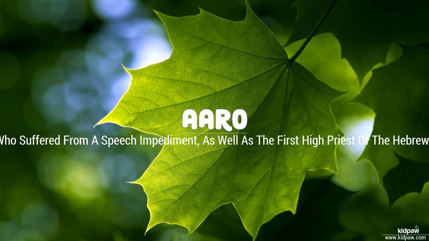 Aaro beautiful wallper