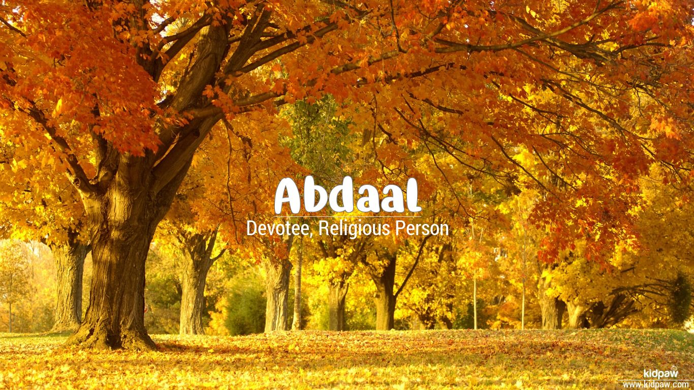 Abdaal beautiful wallper