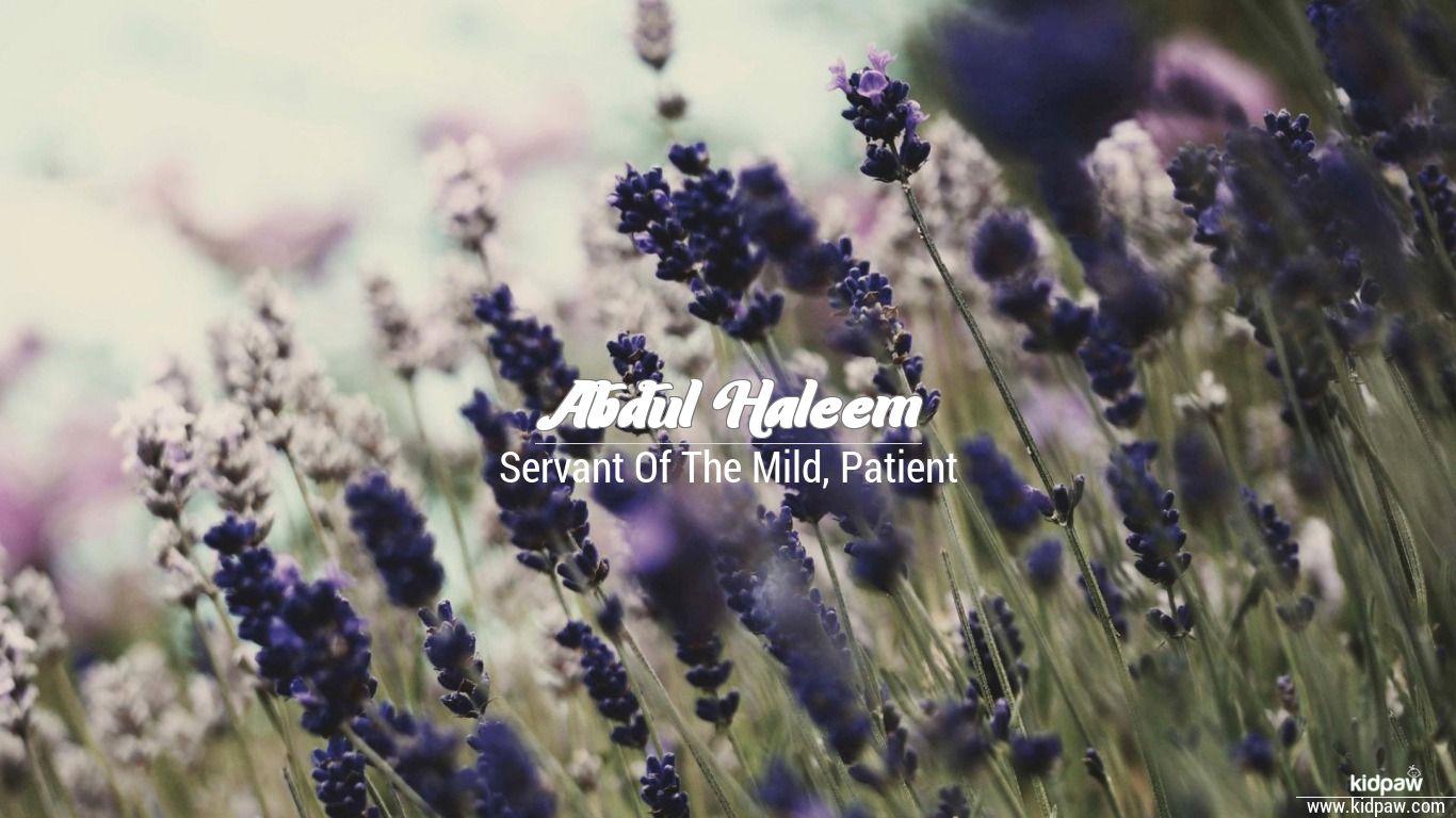 Abdul haleem beautiful wallper