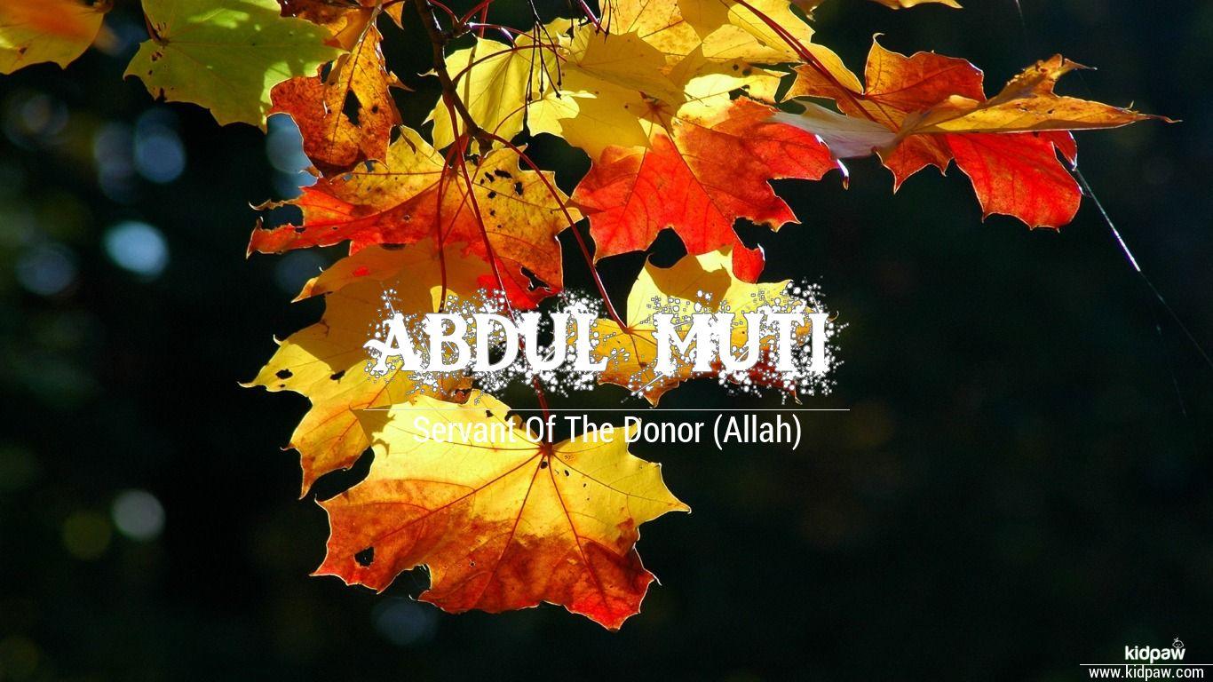 Abdul muti beautiful wallper