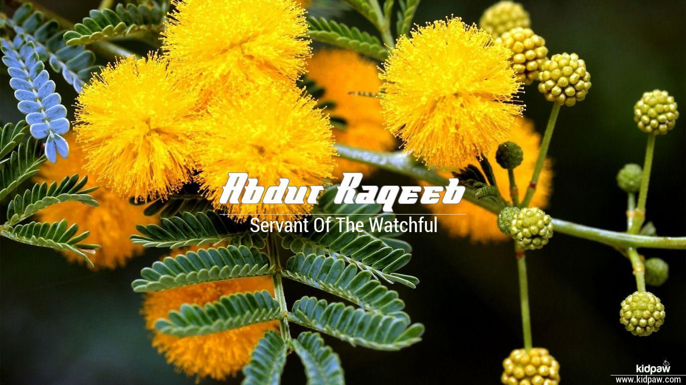 Abdur raqeeb beautiful wallper