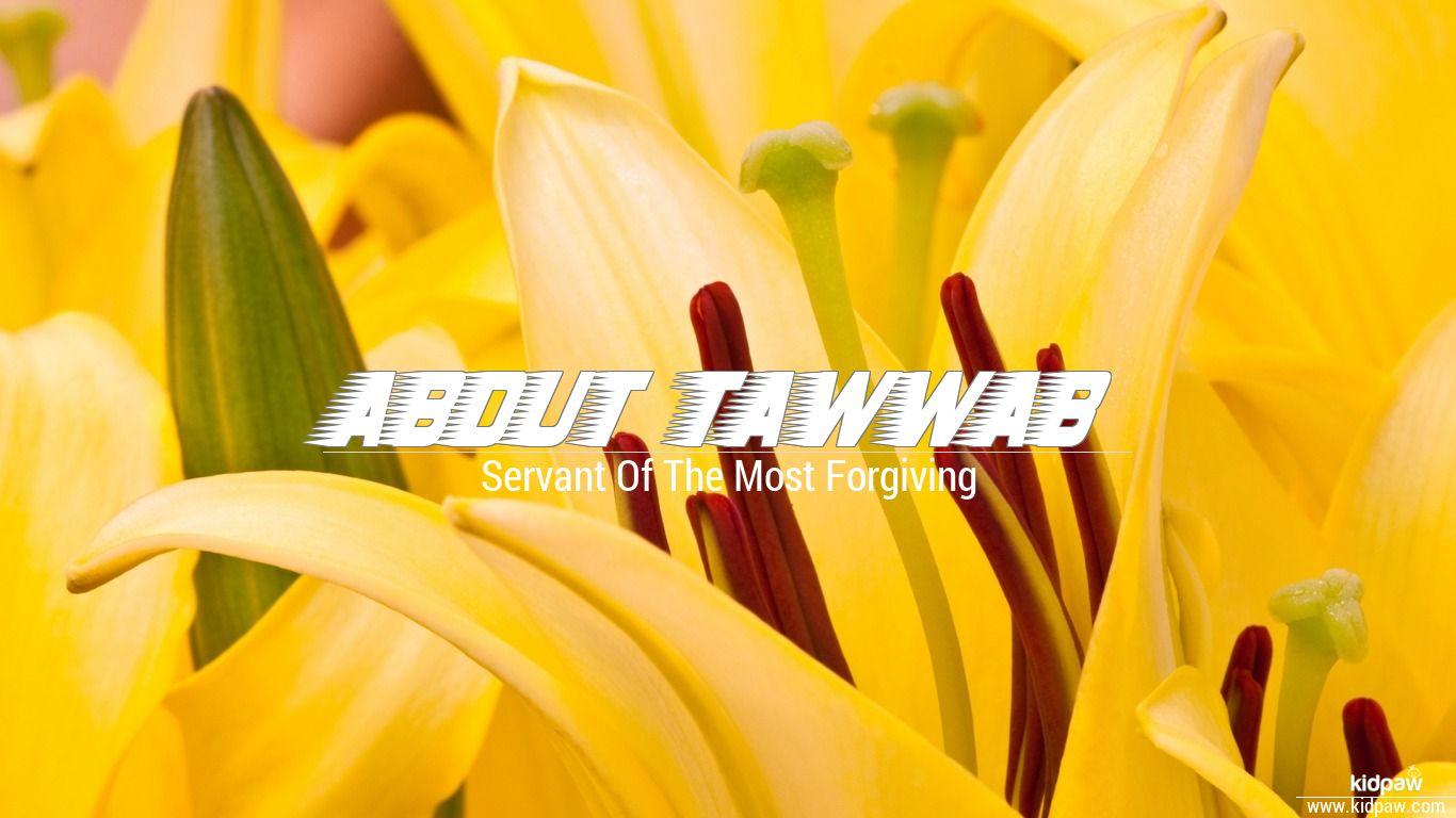 Abdut tawwab beautiful wallper