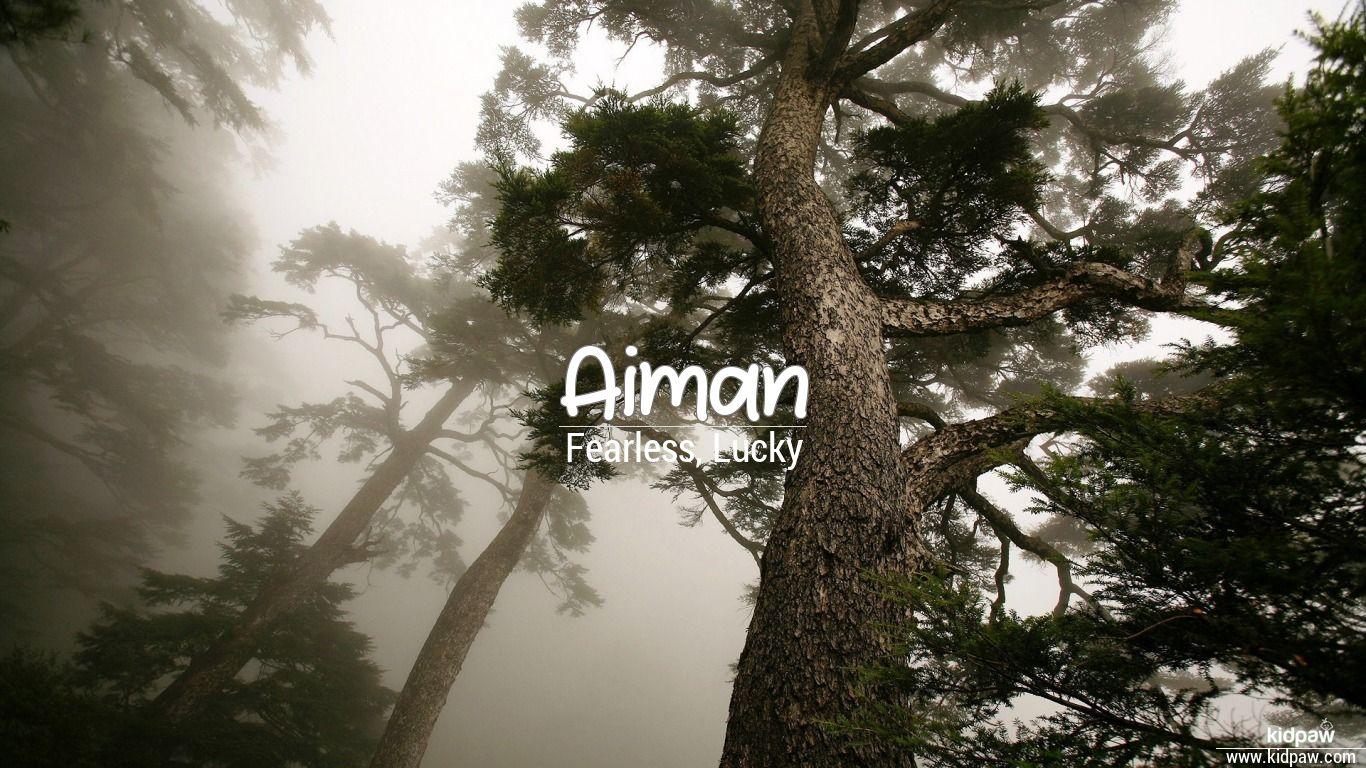 ایمان | Aiman Name Meanings in Urdu & English, Baby Names ... | 1366 x 768 jpeg 220kB