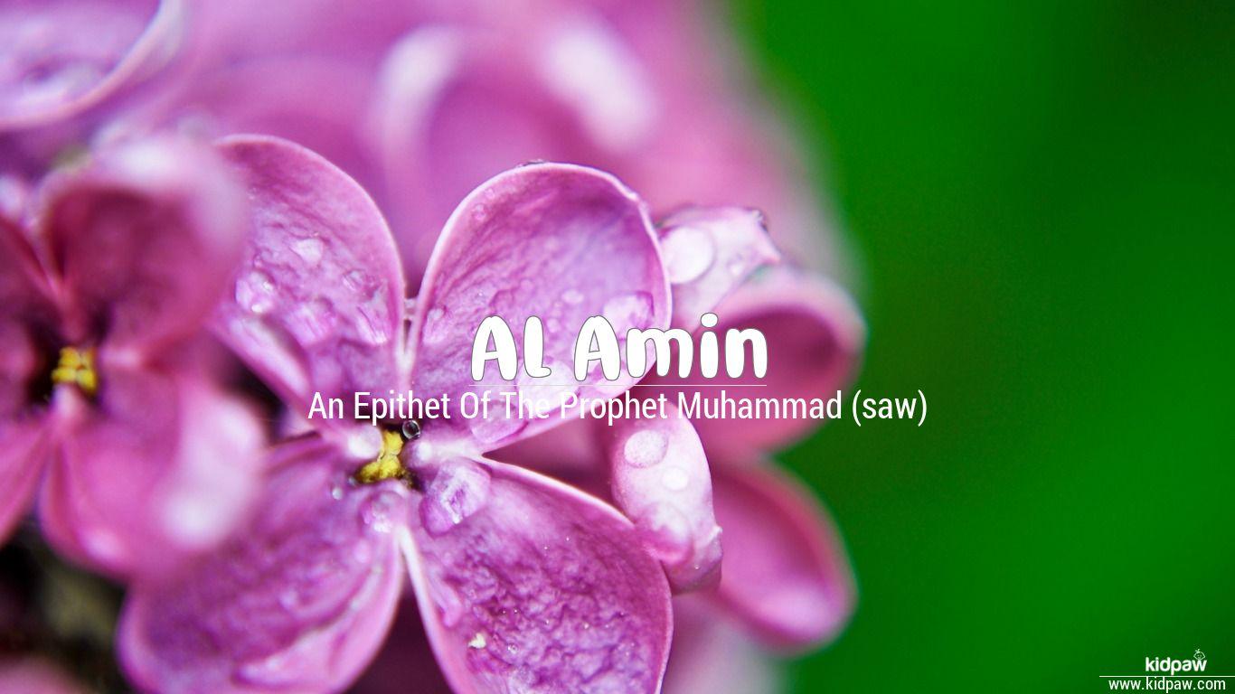 Al amin beautiful wallper