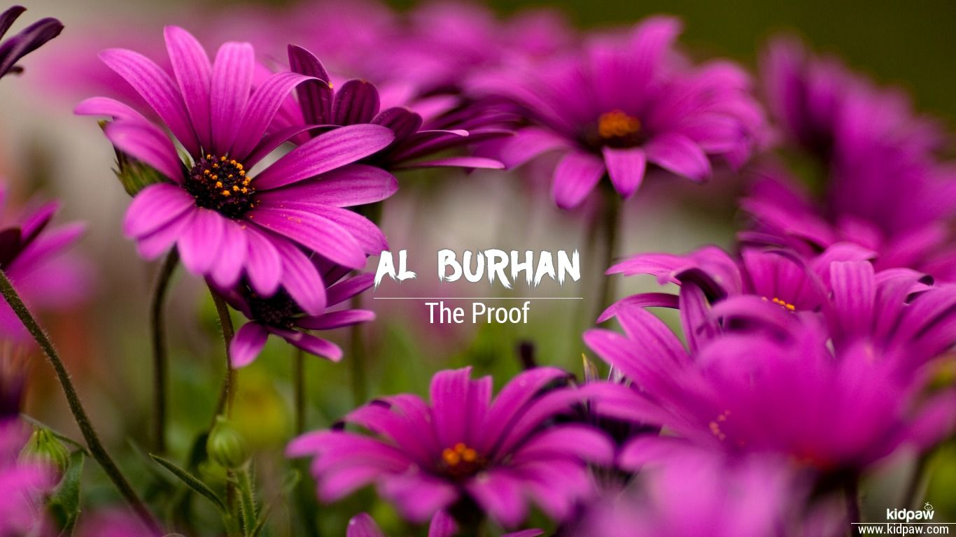 Al burhan beautiful wallper