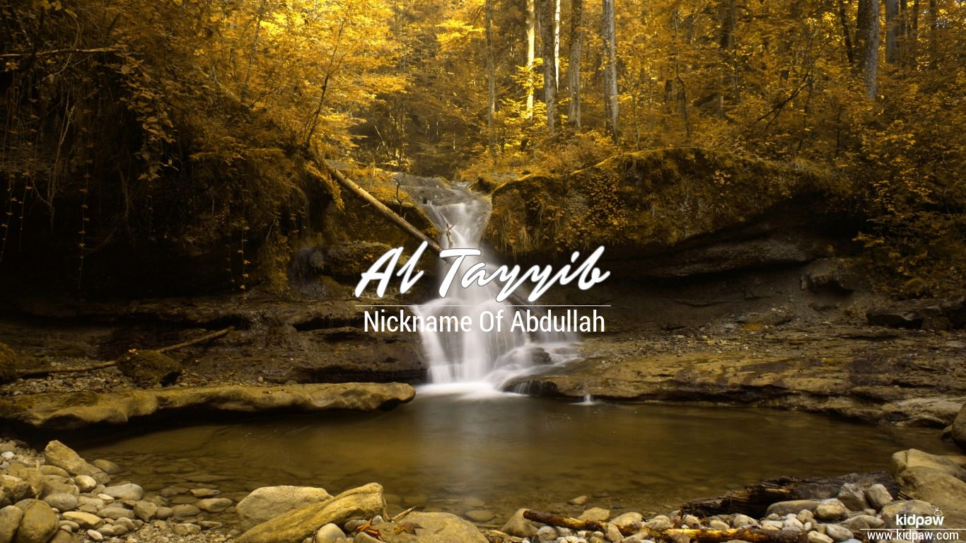 Al tayyib beautiful wallper
