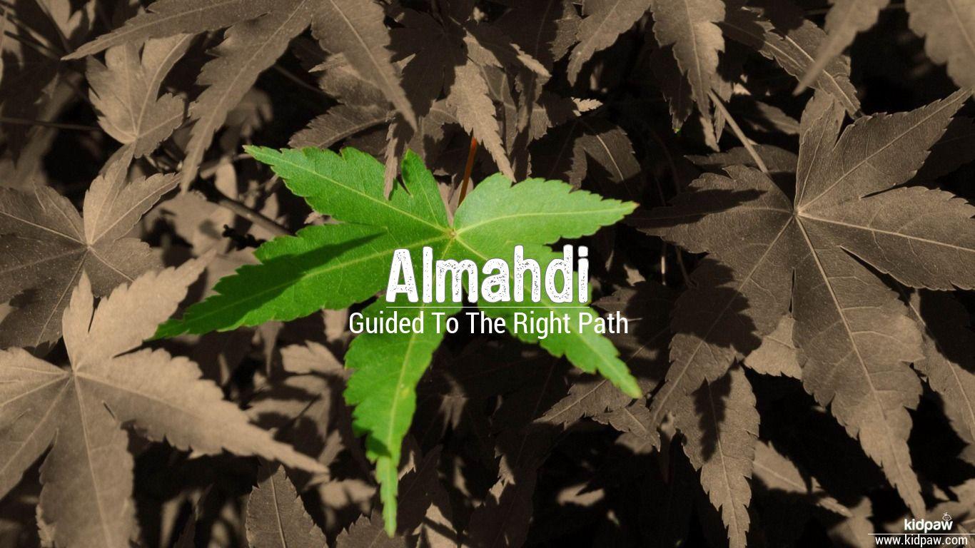 Almahdi beautiful wallper