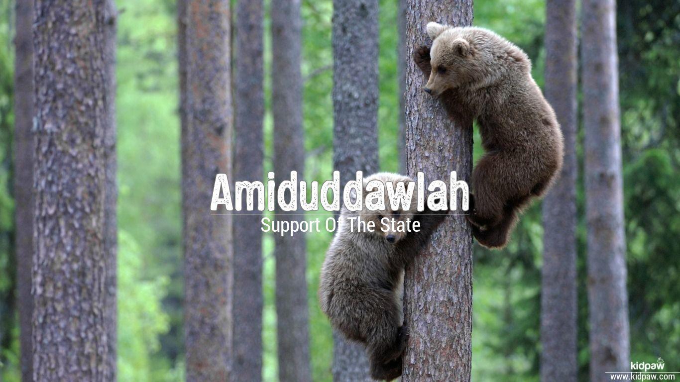 Amiduddawlah beautiful wallper