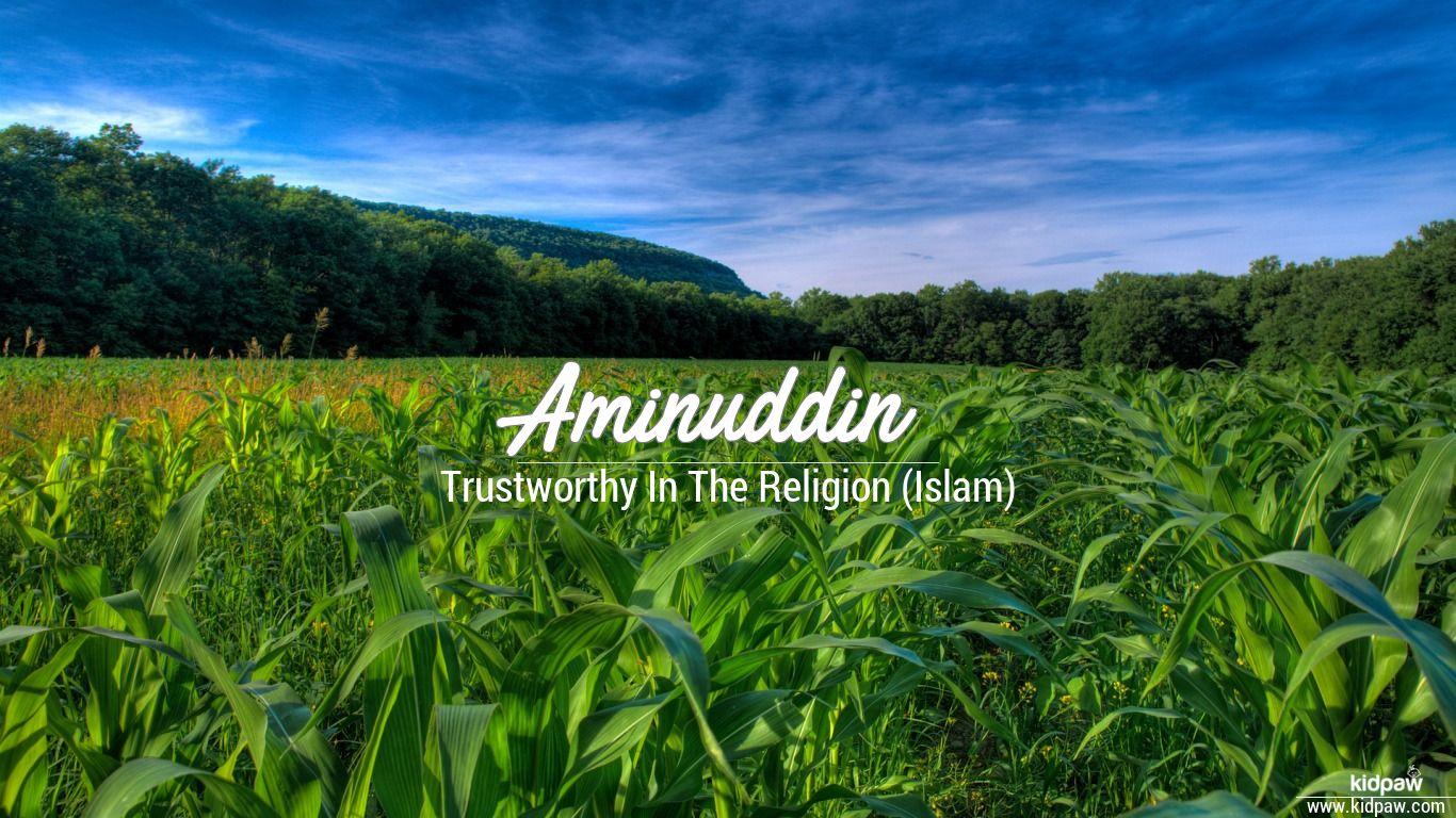 Aminuddin beautiful wallper