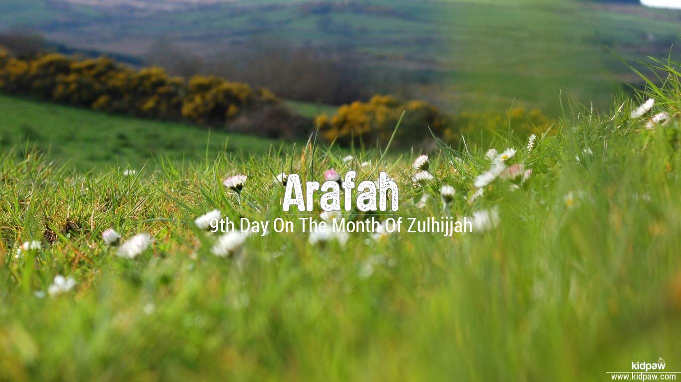 Arafah beautiful wallper
