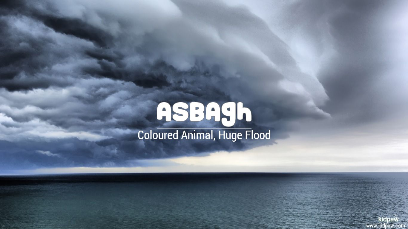 Asbagh beautiful wallper