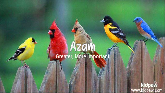 Azam beautiful wallper