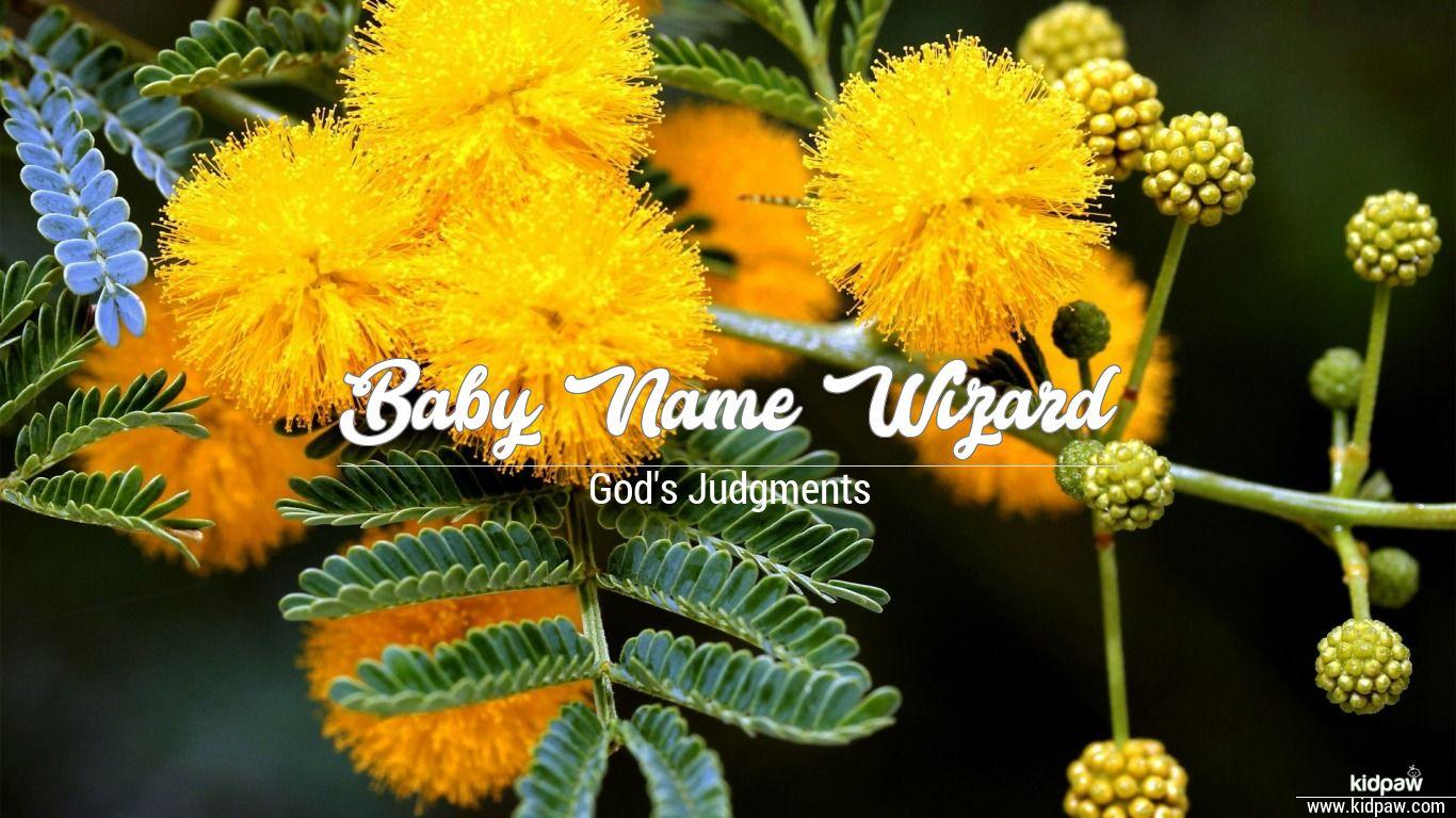 Baby Name Wizard beautiful wallper