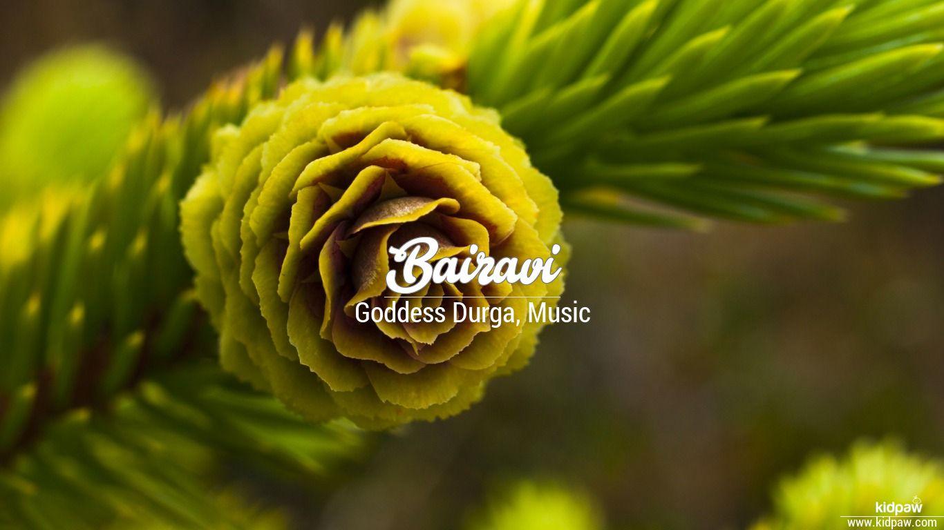 Bairavi beautiful wallper
