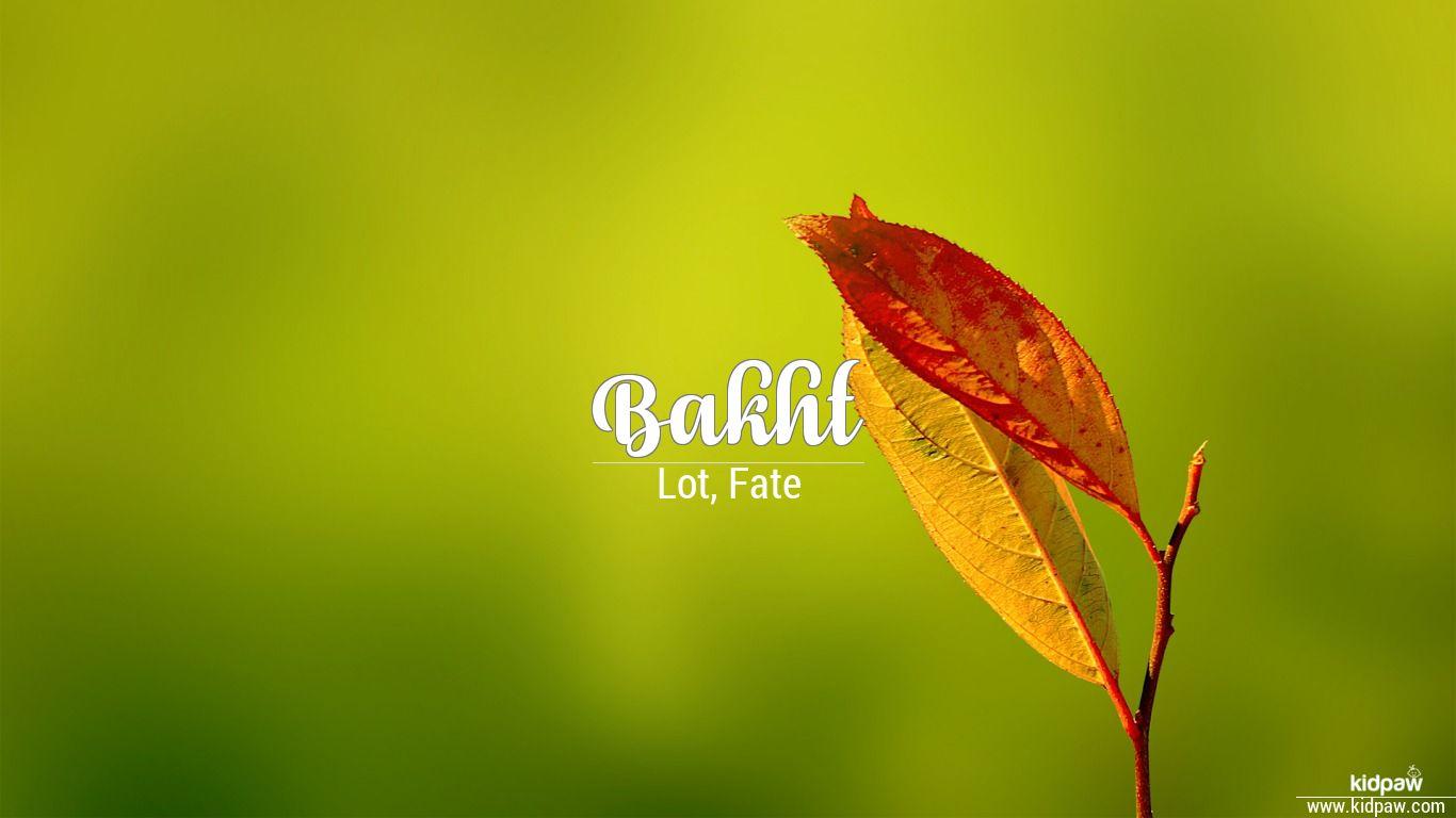 Bakht beautiful wallper