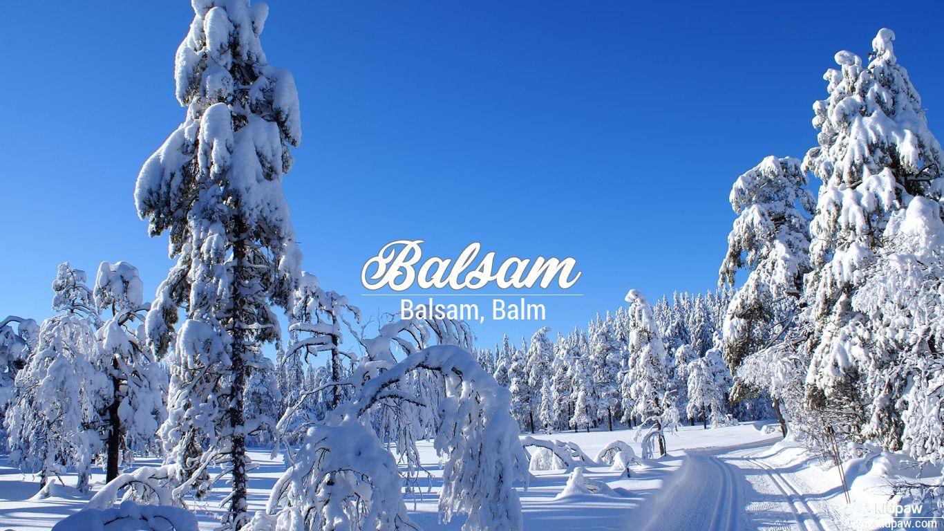 Balsam wallpaper