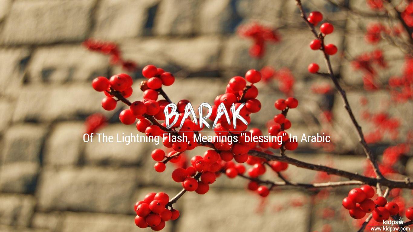 Barak beautiful wallper