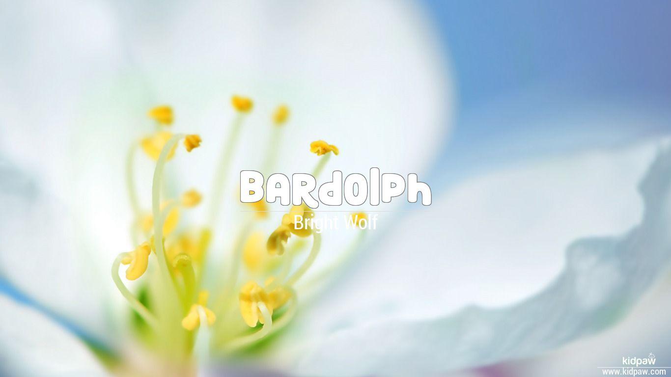 Bardolph beautiful wallper