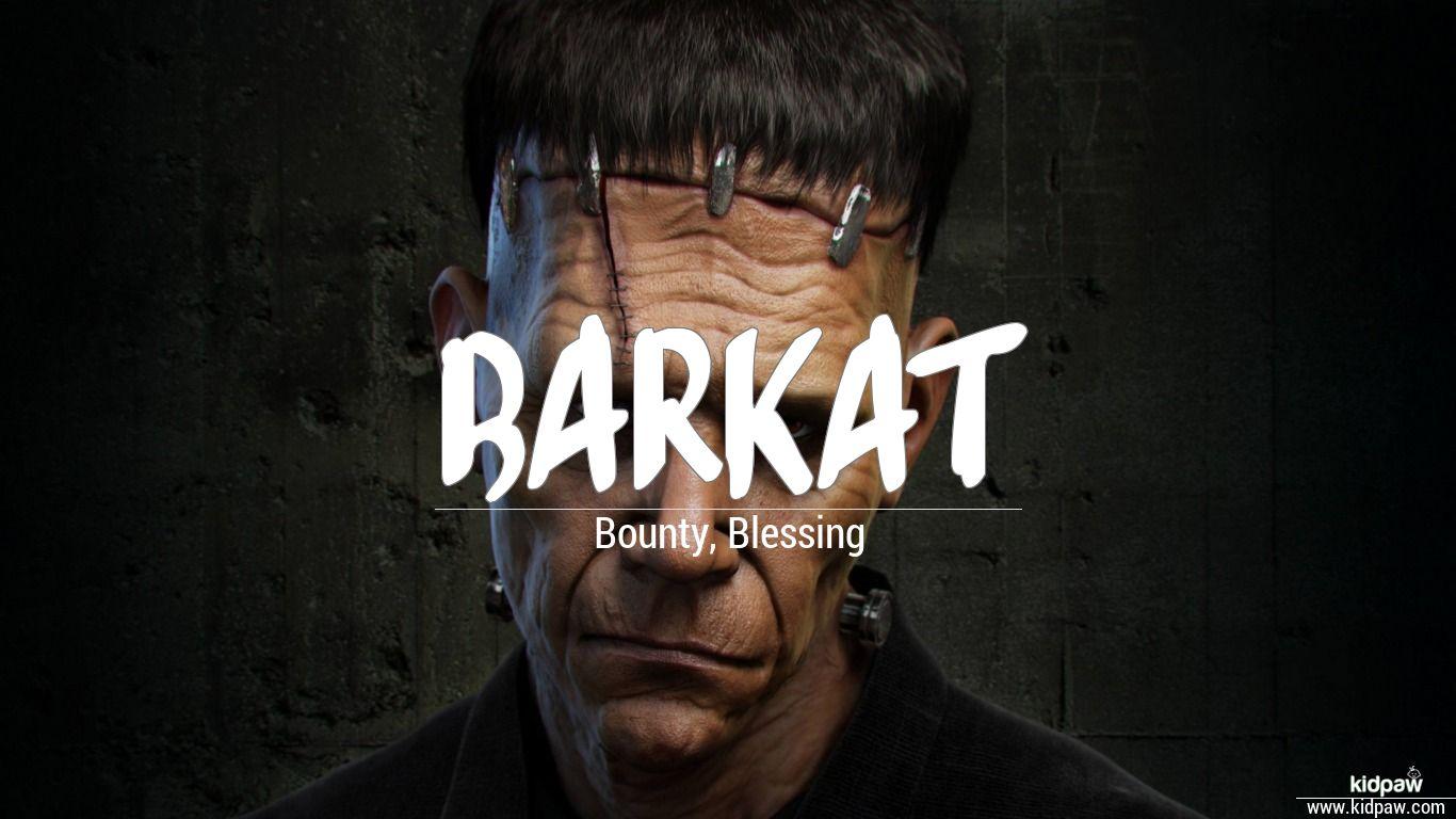 Barkat beautiful wallper