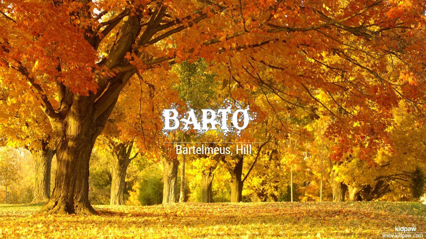 Barto beautiful wallper