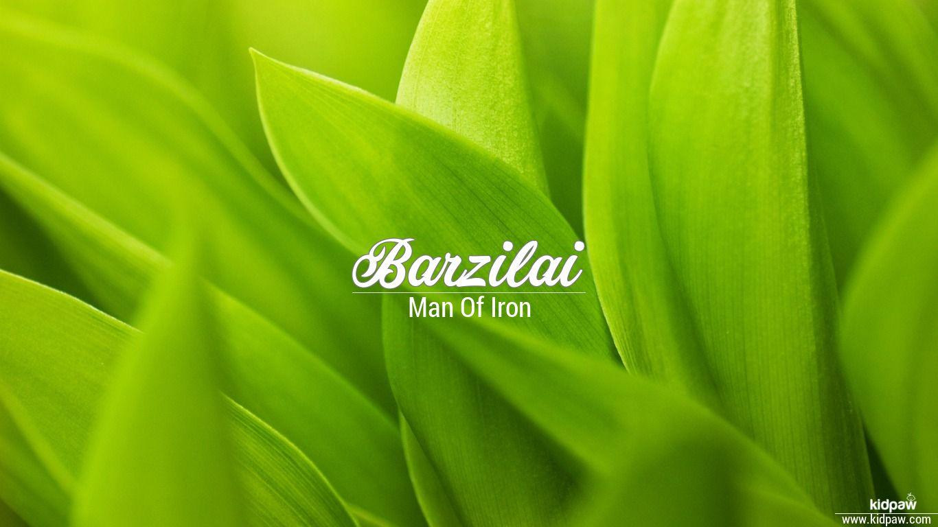 Barzilai beautiful wallper