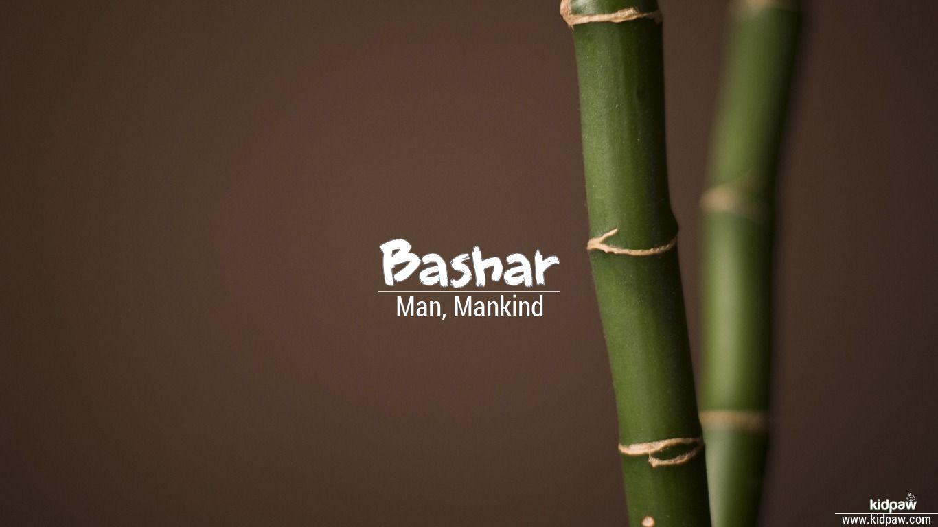 Bashar beautiful wallper