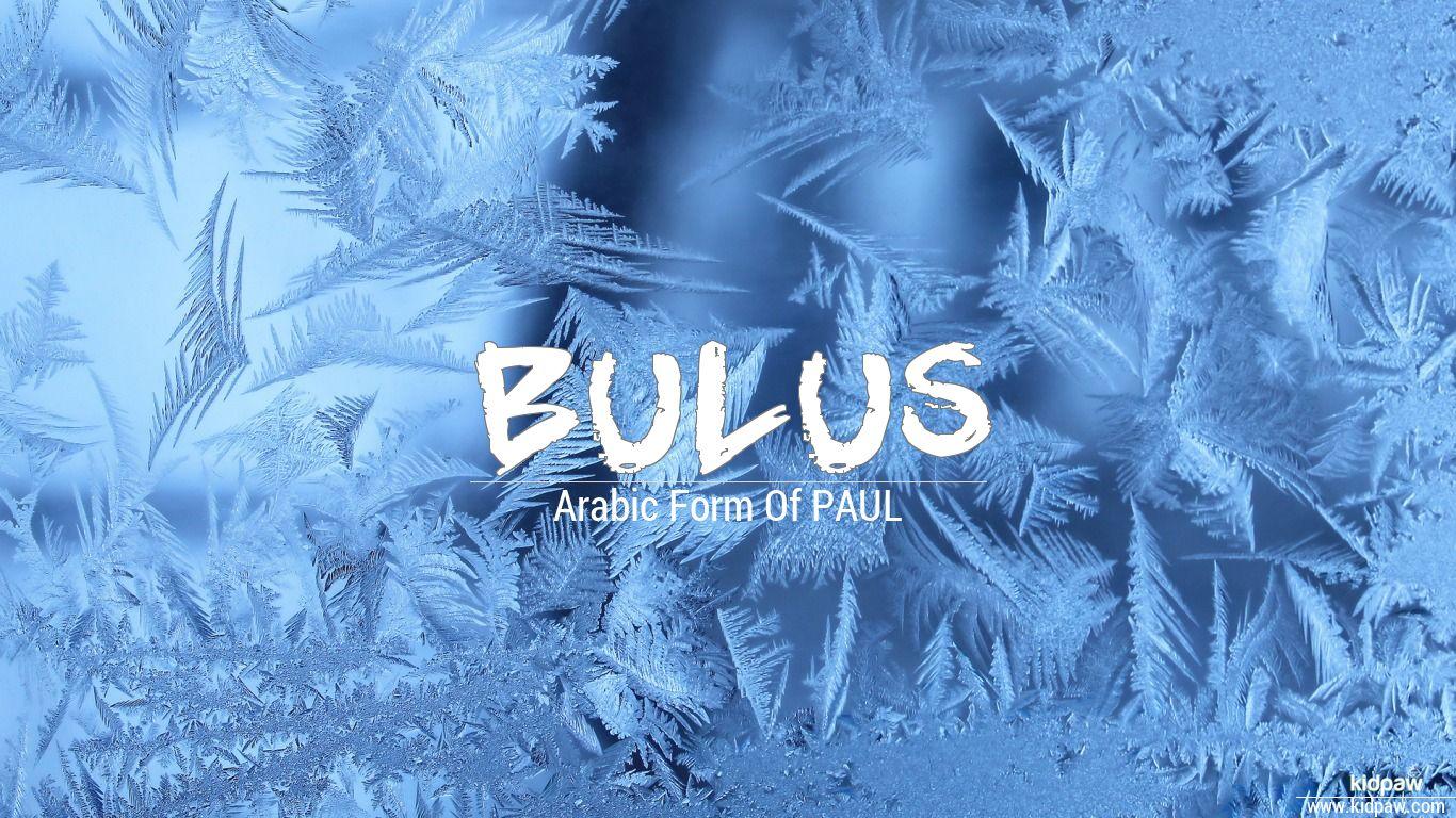 Bulus beautiful wallper