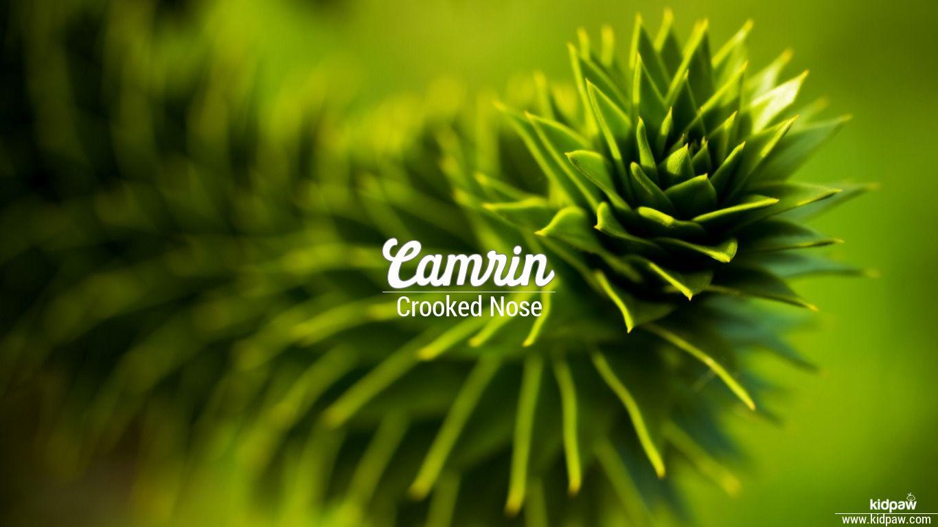 Camrin beautiful wallper