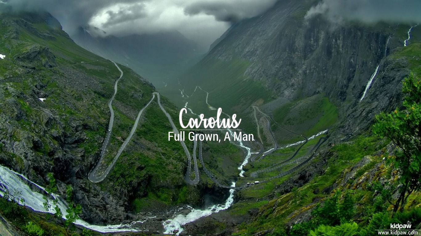 Carolus beautiful wallper