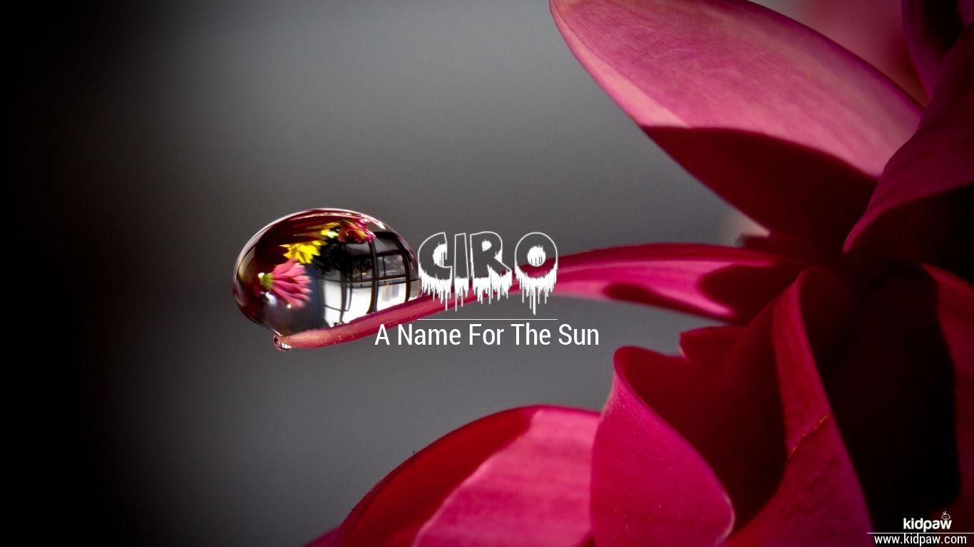 Ciro beautiful wallper