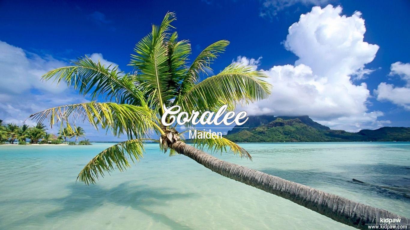Coralee beautiful wallper