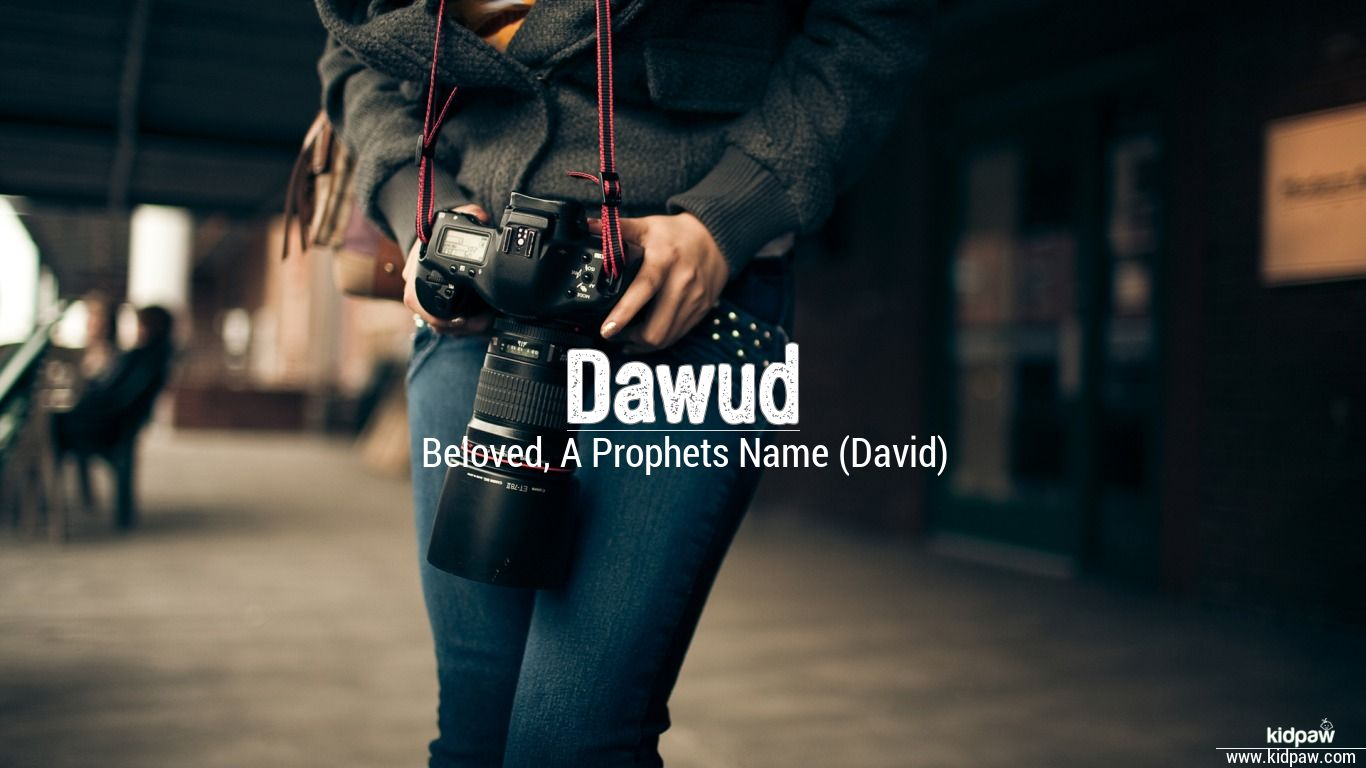 Dawud beautiful wallper