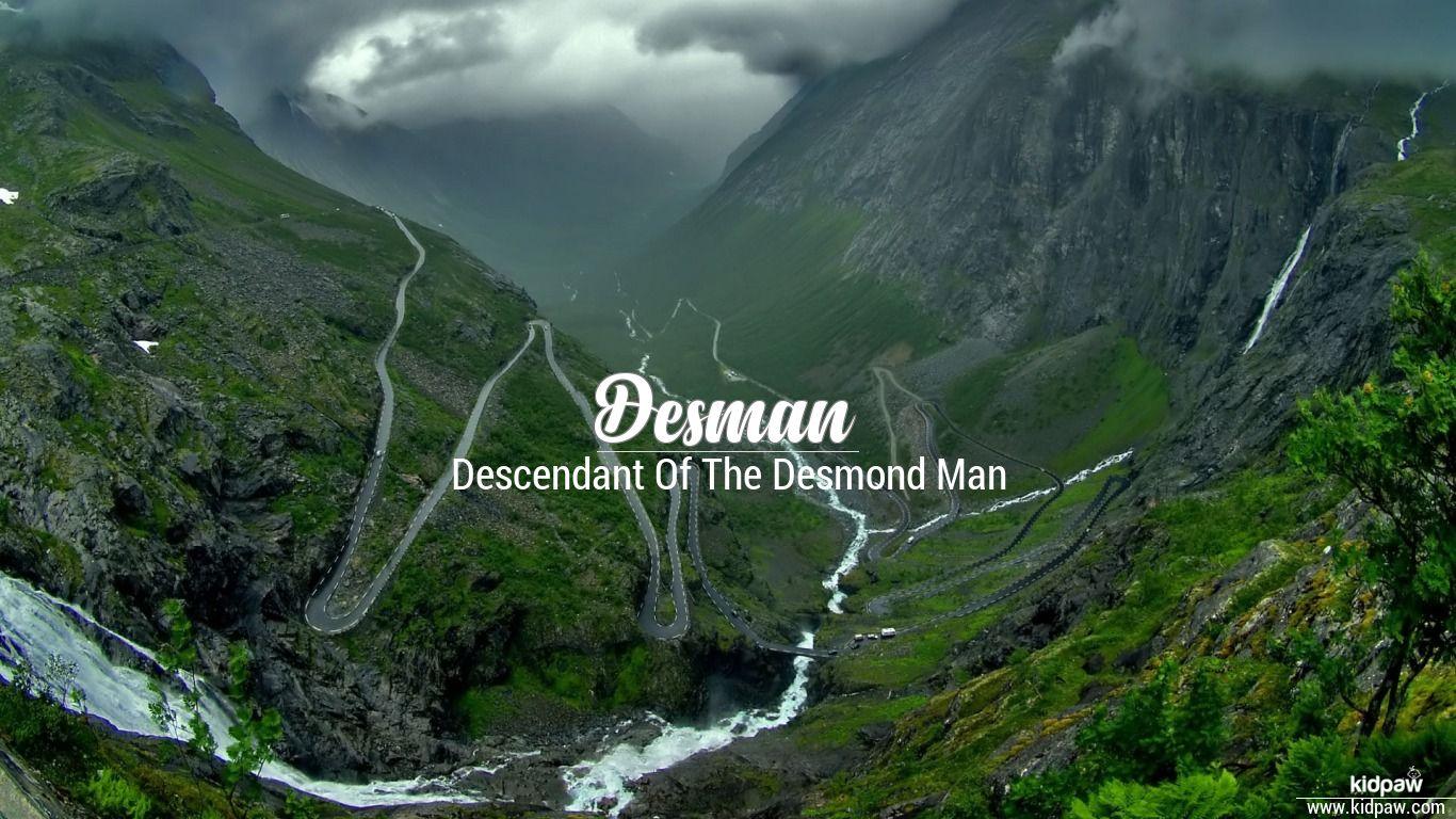 Desman beautiful wallper