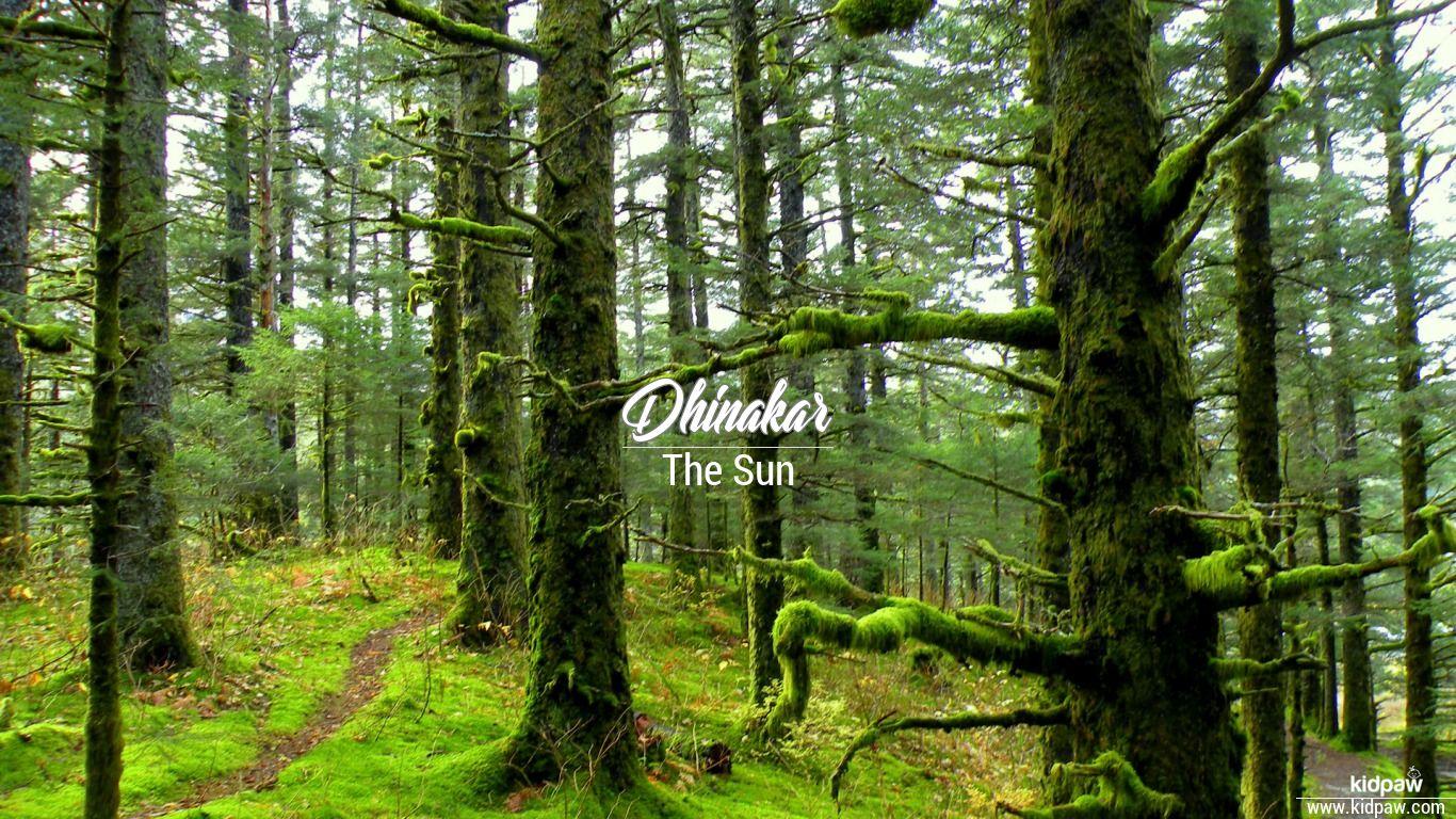 Dhinakar beautiful wallper