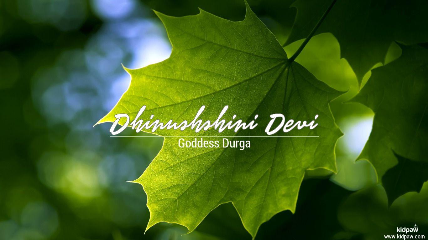 Dhinushshini Devi beautiful wallper