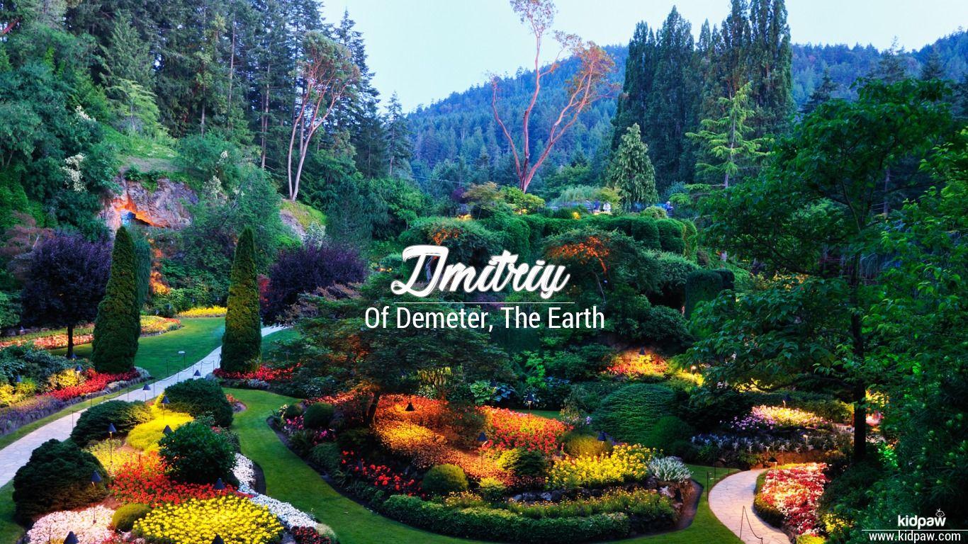 Dmitriy beautiful wallper