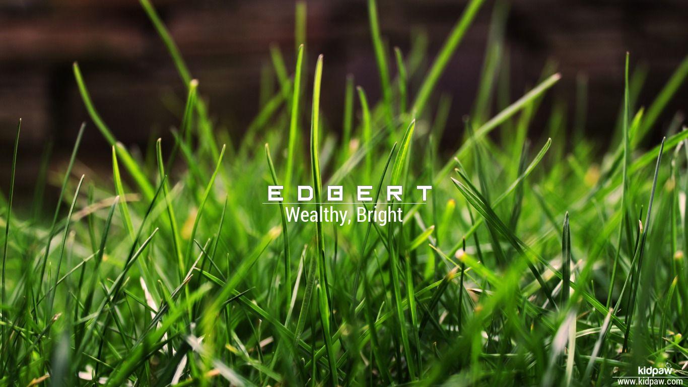 Edbert beautiful wallper