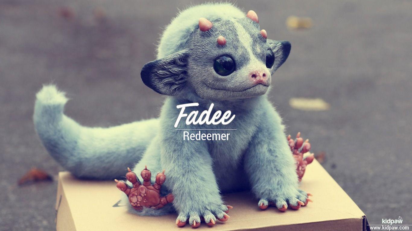 Fadee beautiful wallper