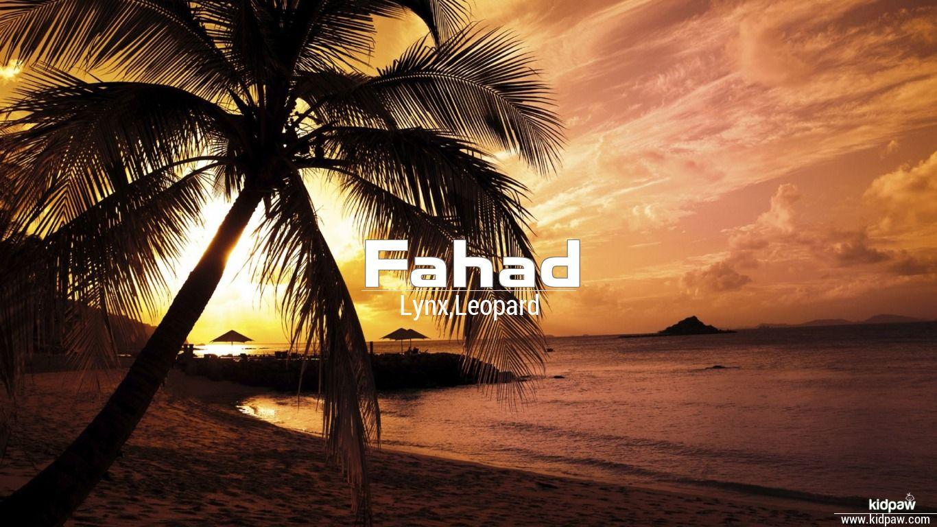 Fahad beautiful wallper