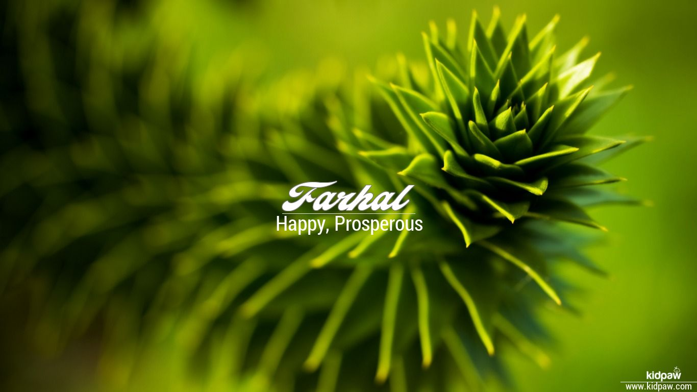 Farhal beautiful wallper