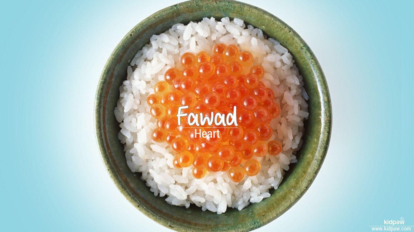 Fawad beautiful wallper