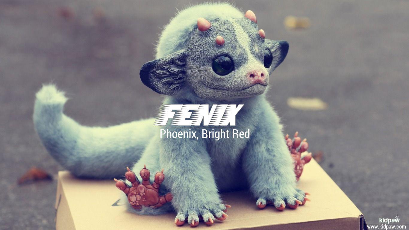 Fenix beautiful wallper
