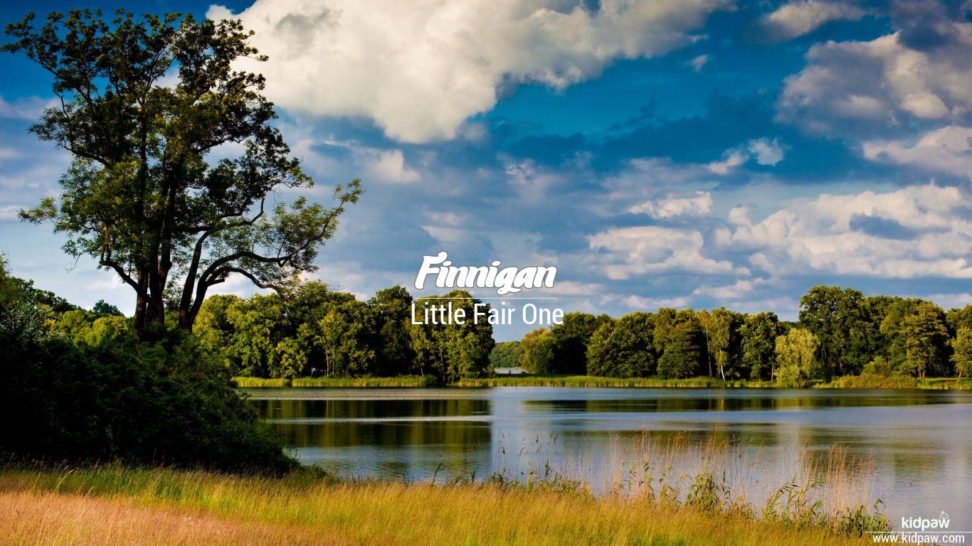 Finnigan beautiful wallper