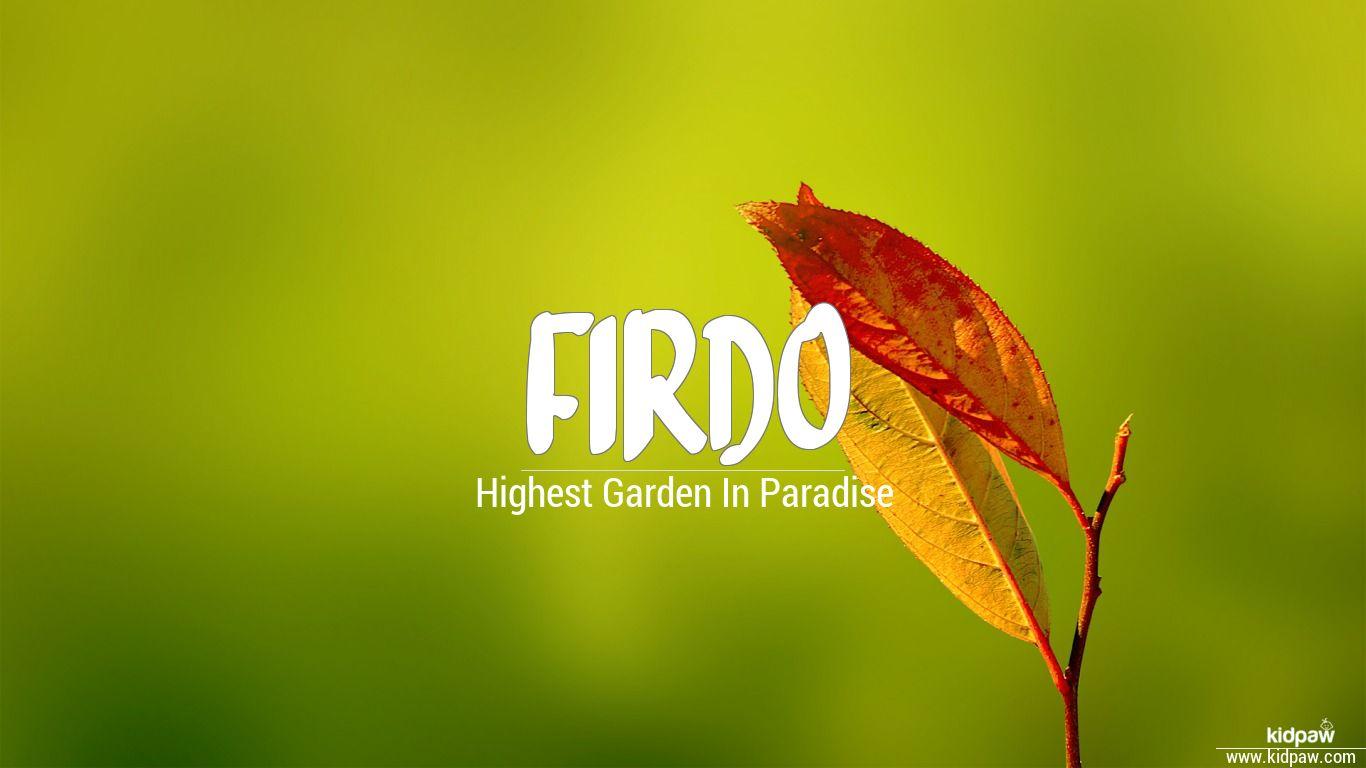 Firdo beautiful wallper