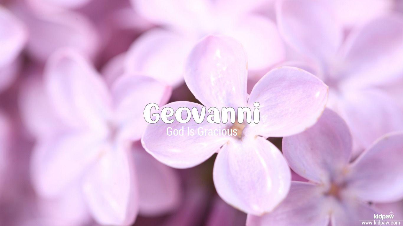 Geovanni beautiful wallper
