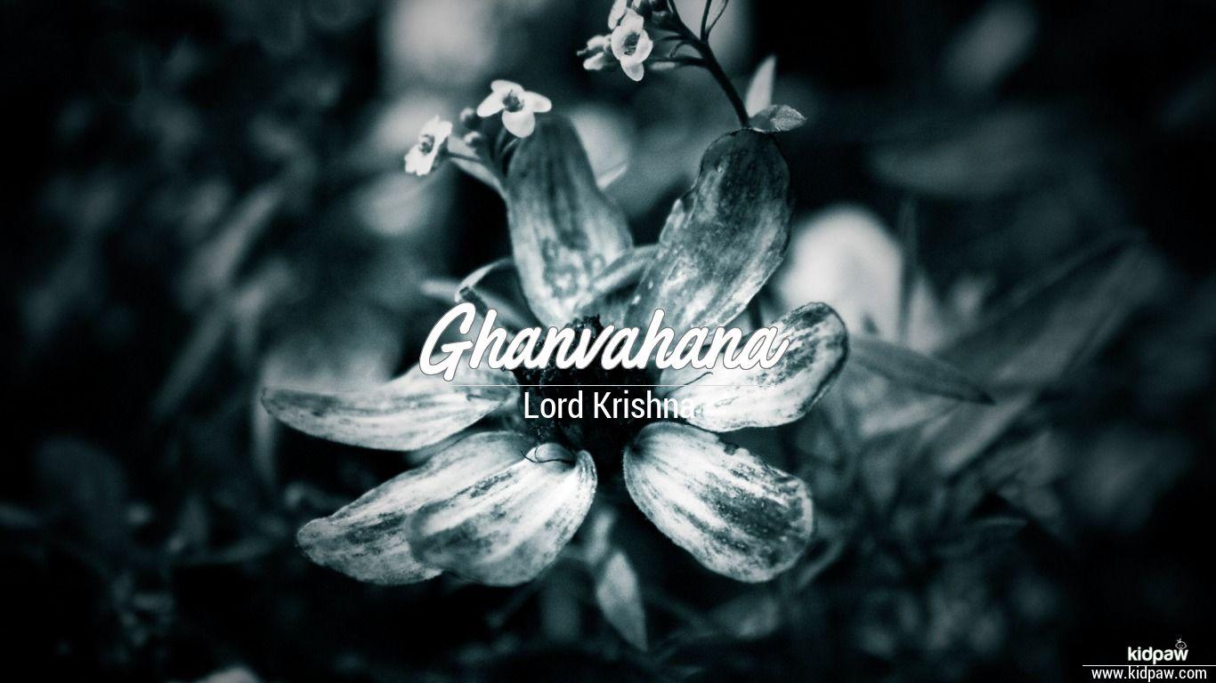 Ghanvahana beautiful wallper