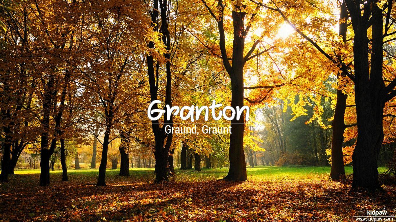 Granton beautiful wallper