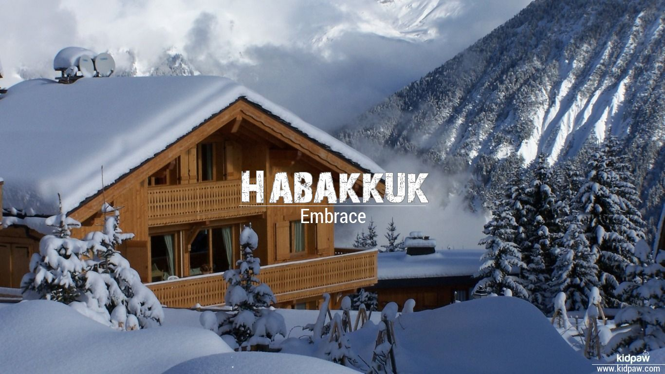 Habakkuk beautiful wallper