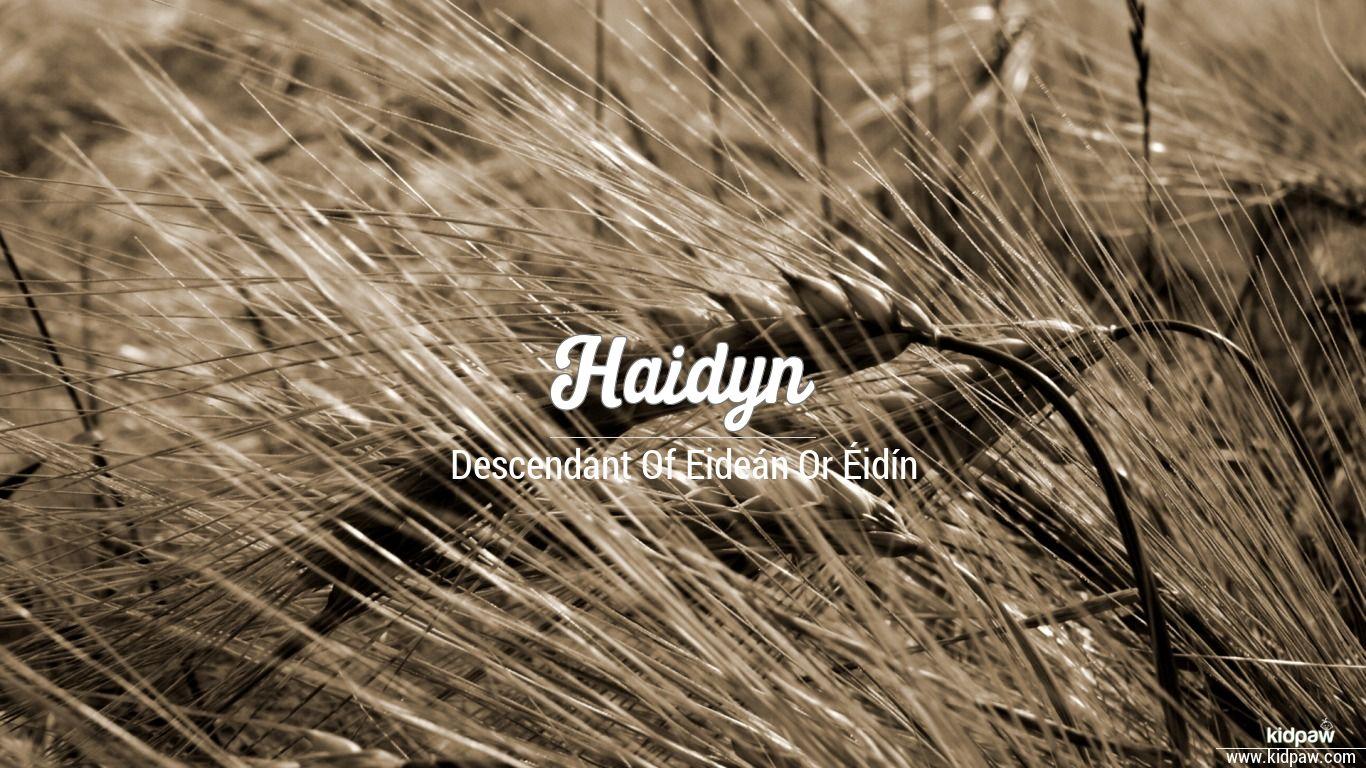 Haidyn beautiful wallper
