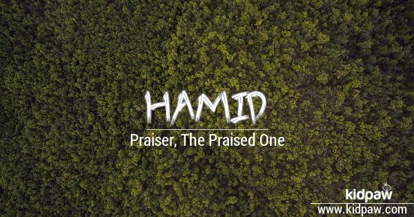 Hamid beautiful wallper